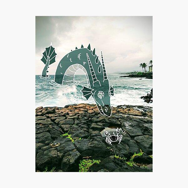 Sea Dragon Hello! Photographic Print