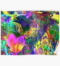 Lovely Colours Tulips. Poster