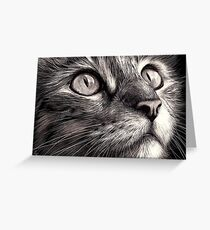 Cat's face - scratchboard art Greeting Card