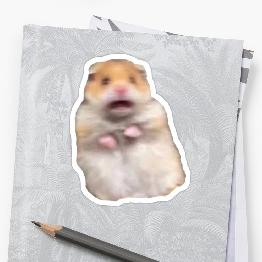"""""""screaming hamster meme"""" Sticker by james-heath   Redbubble"""