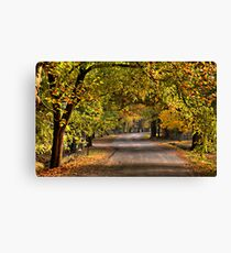 Autumn Leaves - Hill End, NSW Australia - The HDR Experience Canvas Print