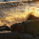 big splash by Cheryl Dunning