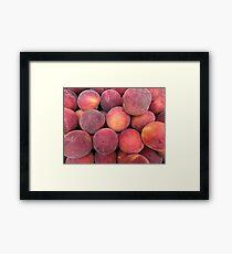 Prunus persica... Framed Print