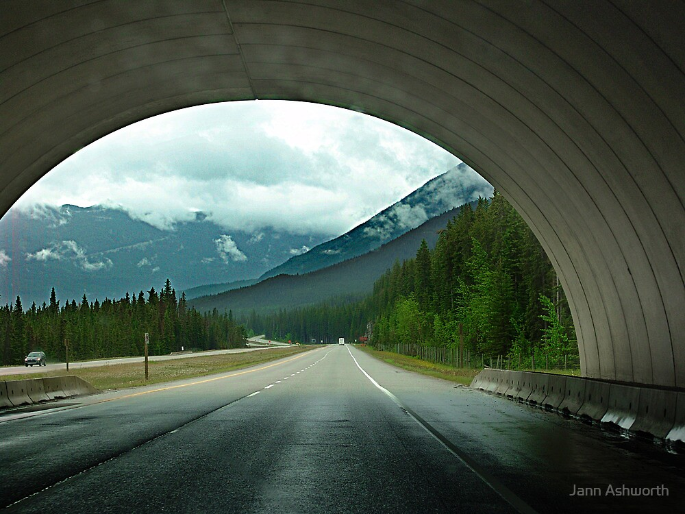 Wildlife Overpass by Jann Ashworth