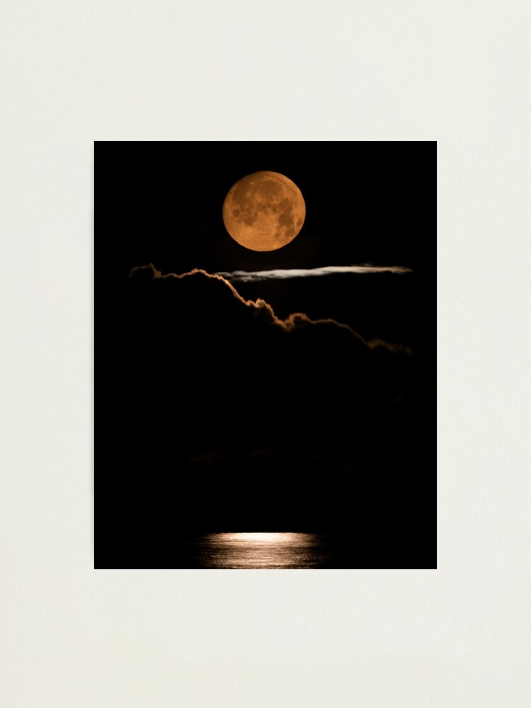 Alternate view of Moon Birch Bay Photographic Print