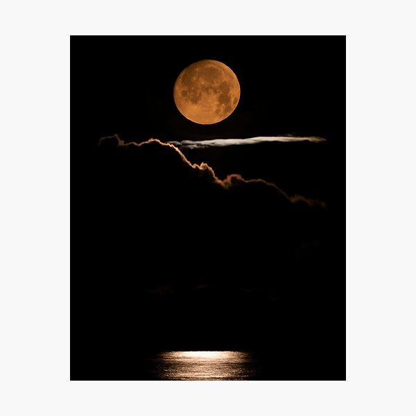 Moon Birch Bay Photographic Print