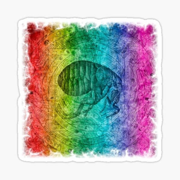 Hooke's Flea Sticker