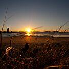 Currumbin Dunes by Matt Ryan
