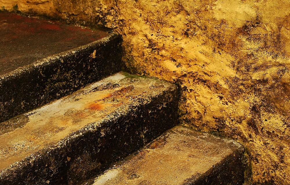 3 steps 2 the wind by Mark Malinowski