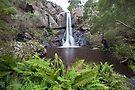 Lower Stony Falls by Travis Easton
