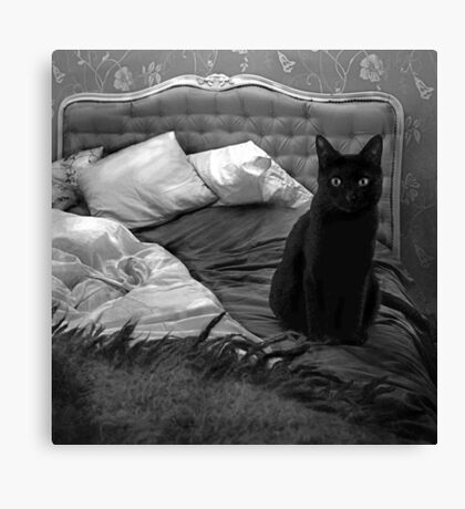 Cat BW Canvas Print