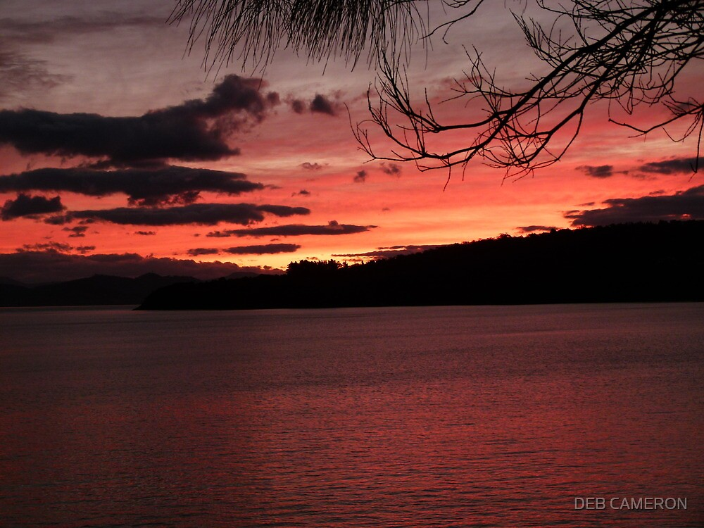 The Dying of the Day by DEB CAMERON