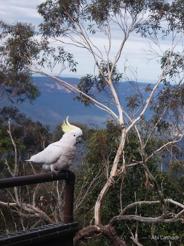 cockatoo blue mountains, Australia by Abi Latham