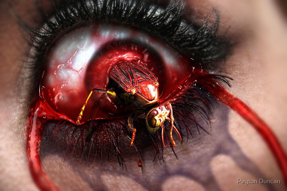 Nightmare in Macro by Peyton Duncan