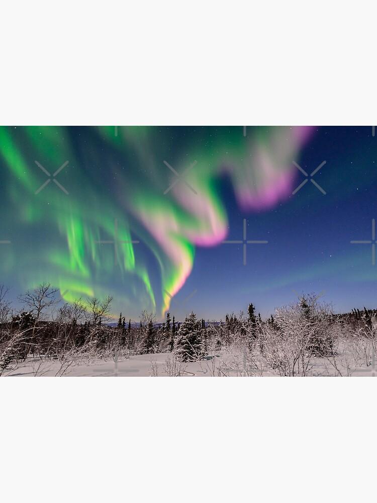 Winter Wonderland by fairbanksaurora
