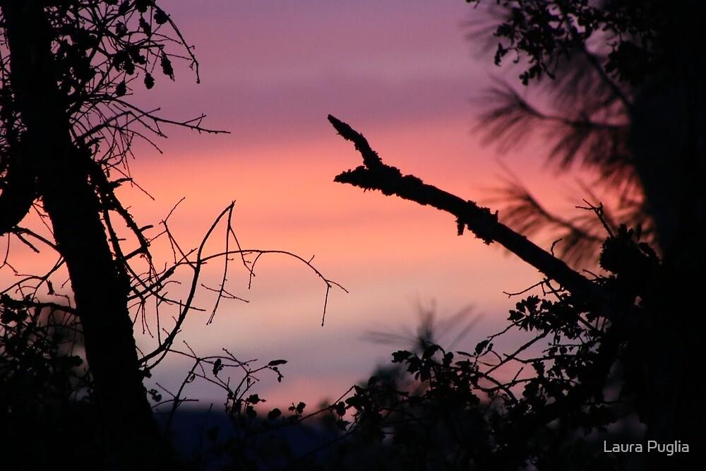 Sunrise taken at Collins Lake  9-27-2015 by Laura Puglia