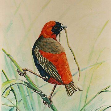 Moms Bird by SueDeNym