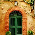 An old door in Tuscany by FOTIS MAVROUDAKIS