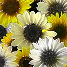 Just Sunflowers 2 by Diane Johnson-Mosley
