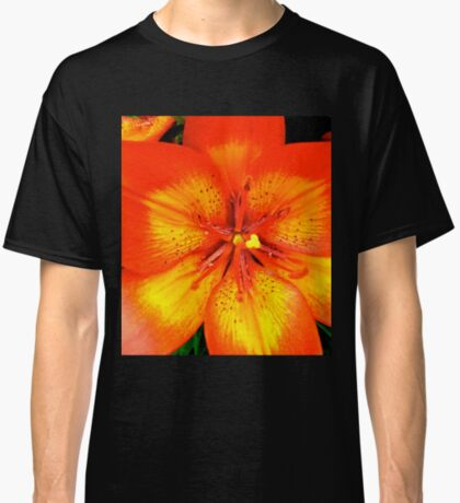 Orange Lily - all products Classic T-Shirt