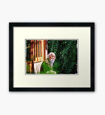 ~ The Master ~ Framed Print