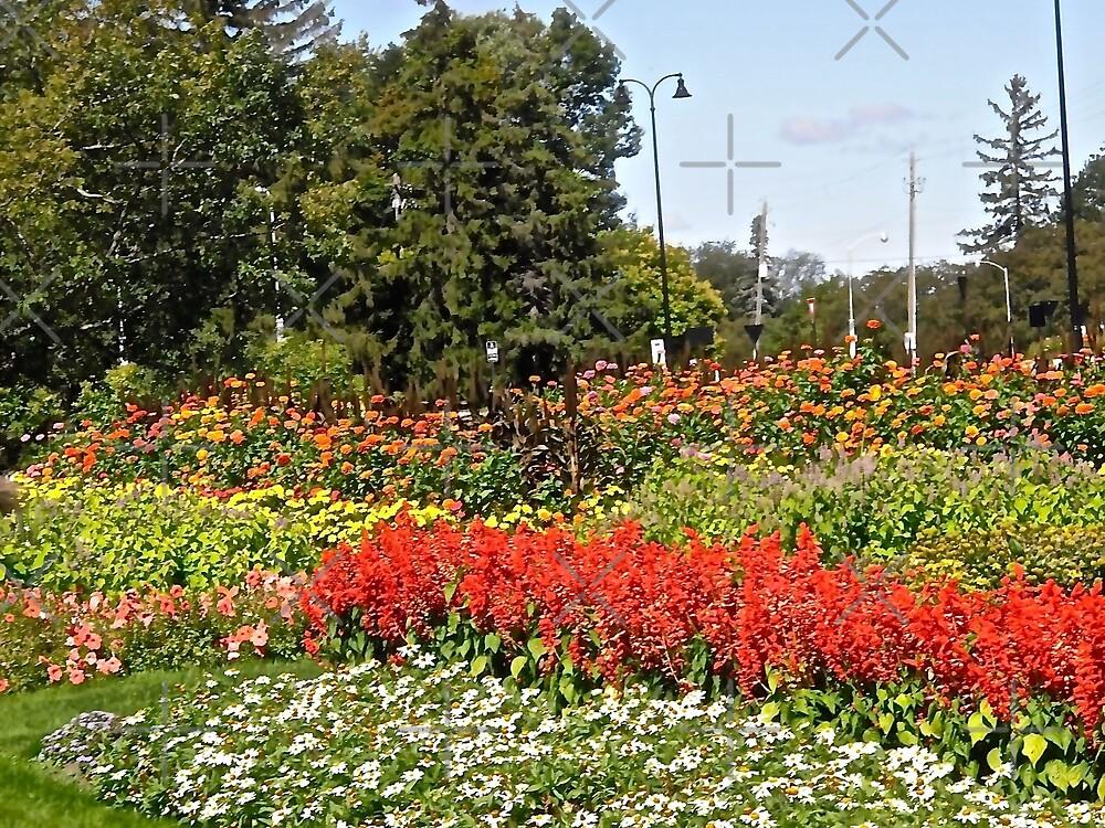 Gardens at the Experimental Farm, Ottawa, ON Canada by Shulie1