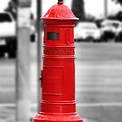Letter Box by Donna Keevers Driver