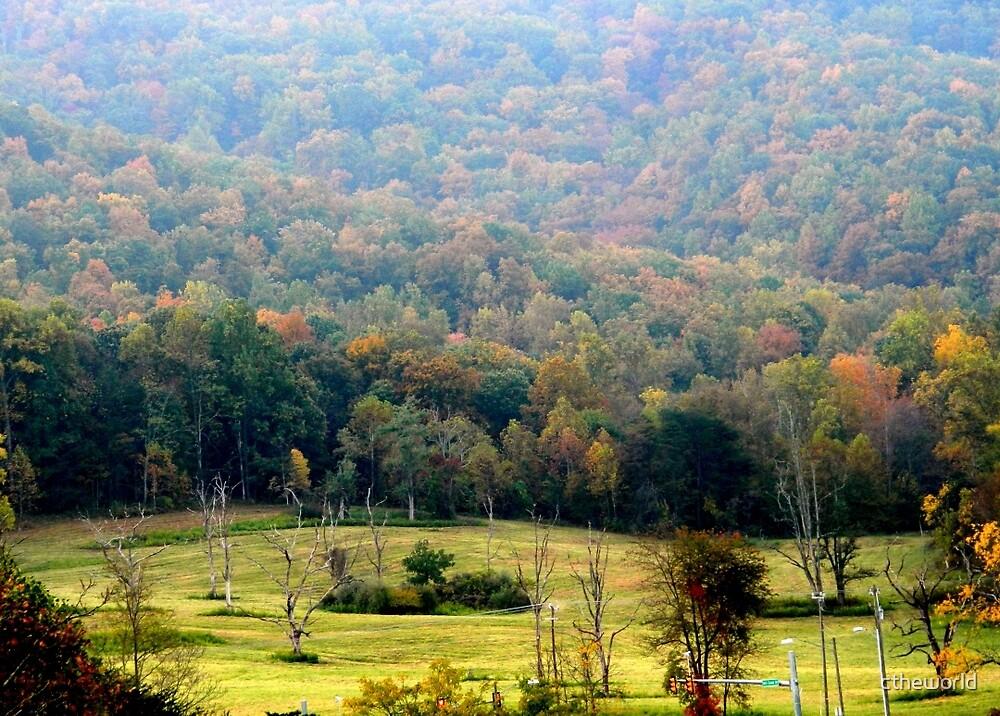 Virginia Landscape     ^ by ctheworld