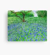 Spring Bloom spread Canvas Print