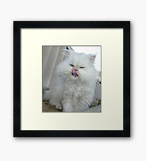 Look!.... I Can Licks My Nose. Framed Print