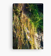 Backwoods Kentucky Waterfall Canvas Print