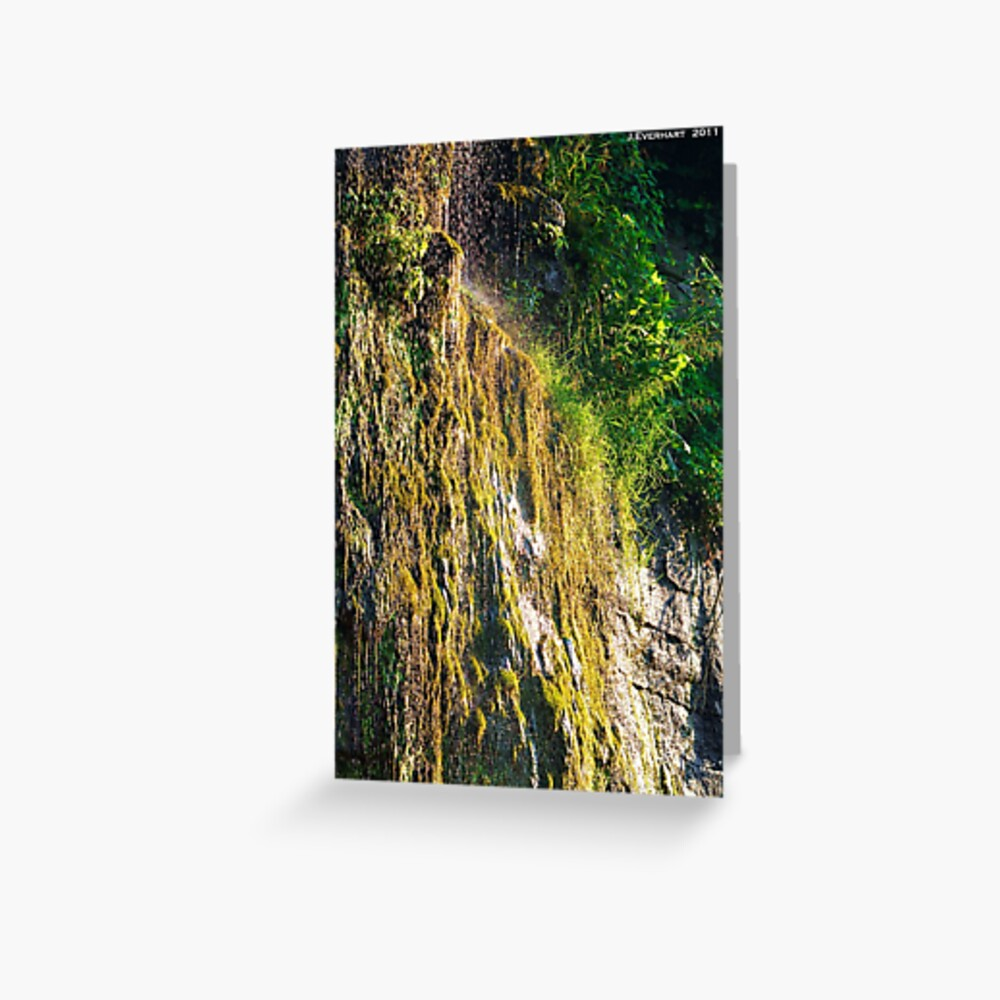 Backwoods Kentucky Waterfall Greeting Card