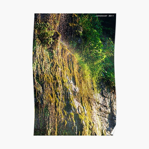 Backwoods Kentucky Waterfall Poster