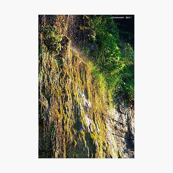 Backwoods Kentucky Waterfall Photographic Print