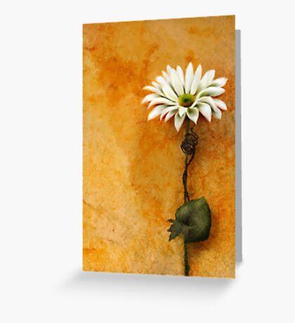 Textured Daisy Greeting Card
