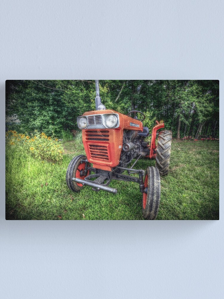 Alternate view of KUBOTA Canvas Print