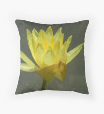 Praying For Rain Throw Pillow