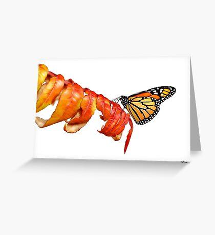 Autumn Monarch 2 Greeting Card