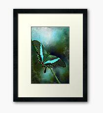 Emerald Peacock Swallowtail Framed Print