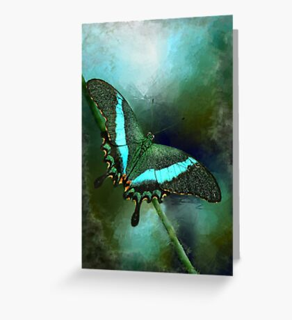 Emerald Peacock Swallowtail Greeting Card
