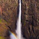 Wallaman Falls by Phil Thomson IPA