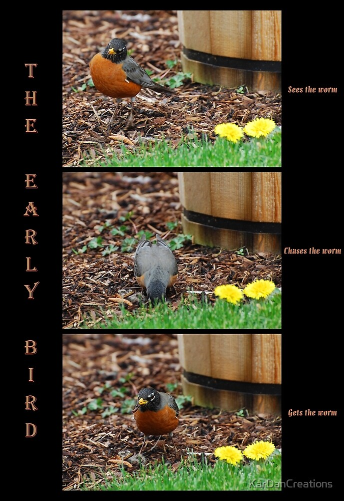 The Early Bird by KarDanCreations