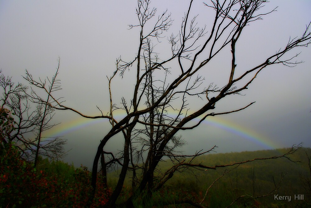 The Rainbow by Kerry  Hill