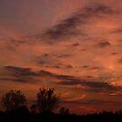 Sunset by Angele Ann  Andrews