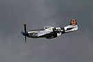 North American Avaition P51 Mustang by SWEEPER