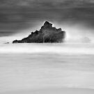 Glasshouse Rocks Life by Chris Putnam
