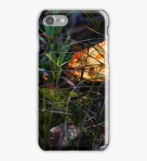 Return of the Sun iPhone Case/Skin