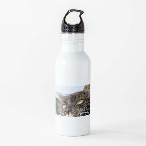 Tuxedo Cat with Sparkling Eyes Water Bottle