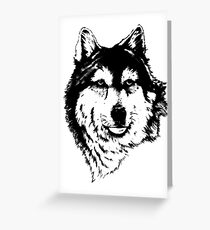 Timber wolf (Canis lupus lycaon) Sub-species of (Canis lupus) Greeting Card
