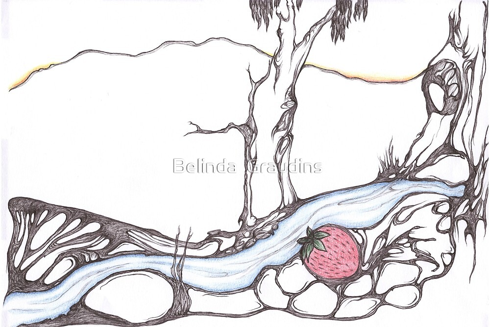 Strawberry Creek by Belinda  Graudins